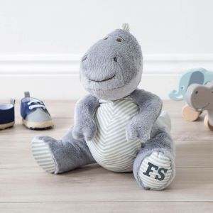Personalised Medium Dinosaur Soft Toy