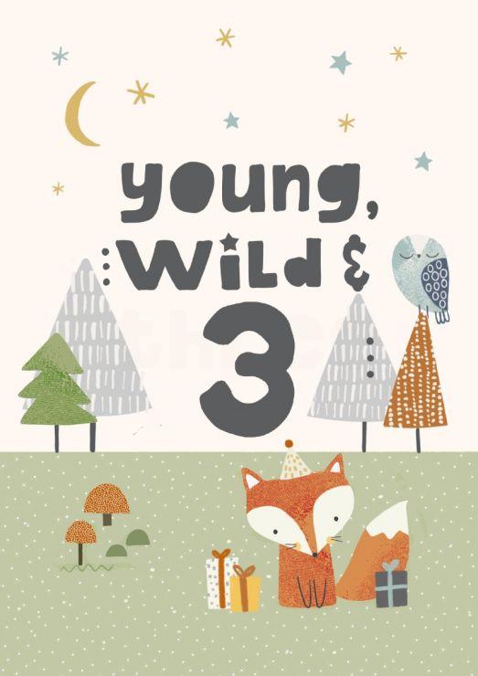 Personalised Fox Design 3rd Birthday Card