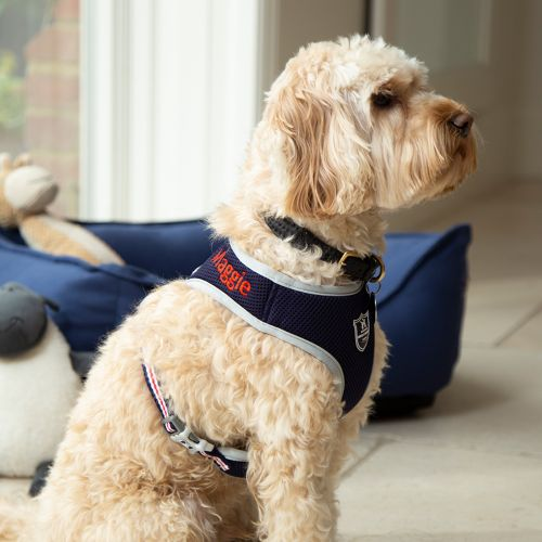 Personalised Mesh Dog Harness - Model