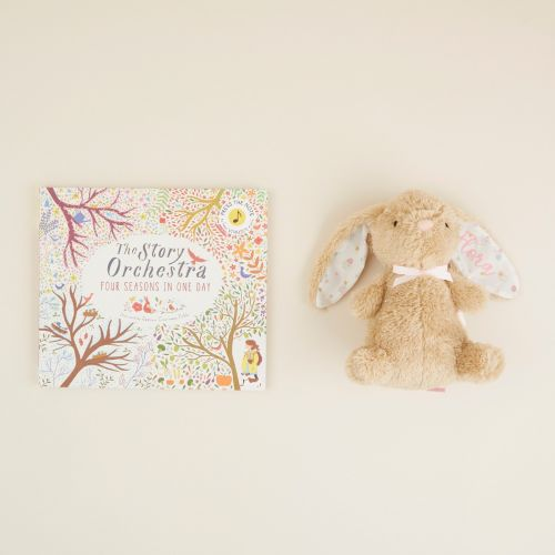Personalised Bunny Read and Cuddle Gift Set
