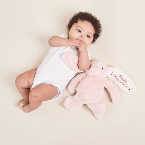 Personalised 'Born in 2021' Pink Bunny Soft Toy