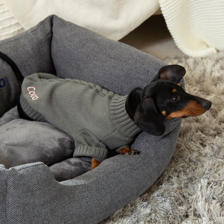 Personalised Cable Knitted Pet Jumper - Model