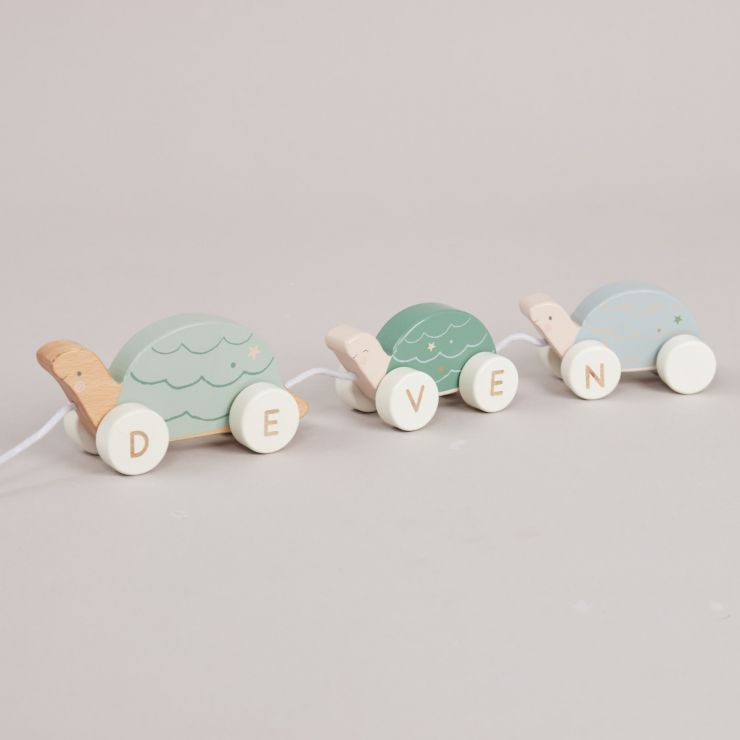Personalised Tortoise Pull-Along Toy