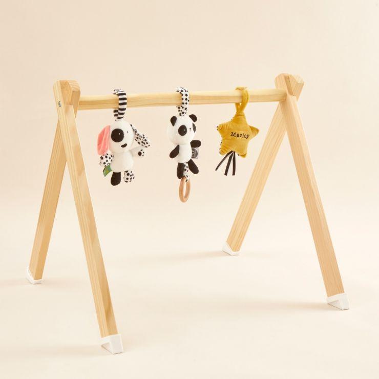 Personalised Mini Mono Baby Gym Playset