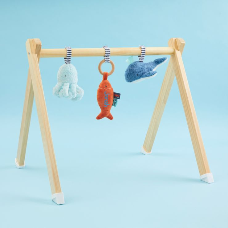 Personalised Born To Be Wild Wooden Baby Play Gym